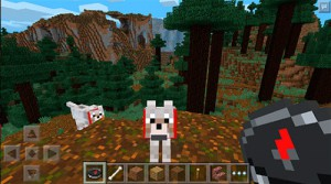 Minecraft_Pocket_Edition_04