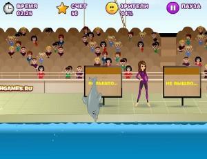 Мое шоу дельфинов